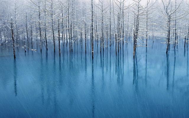 Blue Pond .jpg